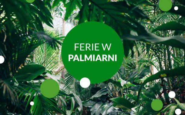 Ferie w Palmiarni Ogrodu Botanicznego | Ferie Łódź 2020